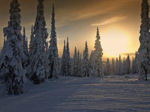 winter-75946_1920